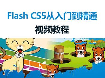Flash CS5 从入门到精通视频教程_软件自学网