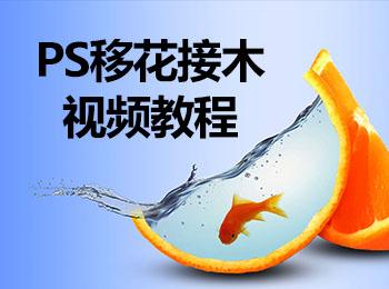 PS移花接木视频教程_软件自学网