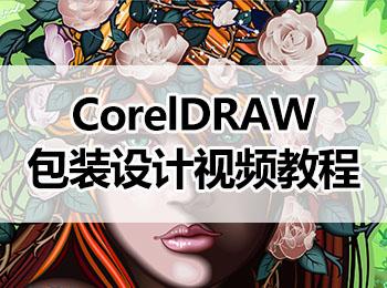 CorelDRAW包装设计视频教程_软件自学网