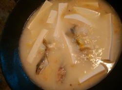 鲶鱼豆腐汤的做法讲解_软件自学网