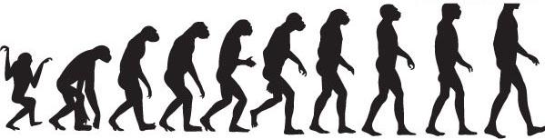 关键字:矢量人物,人类进化,猿类,人猿,人类,爬行,直立行走,剪影