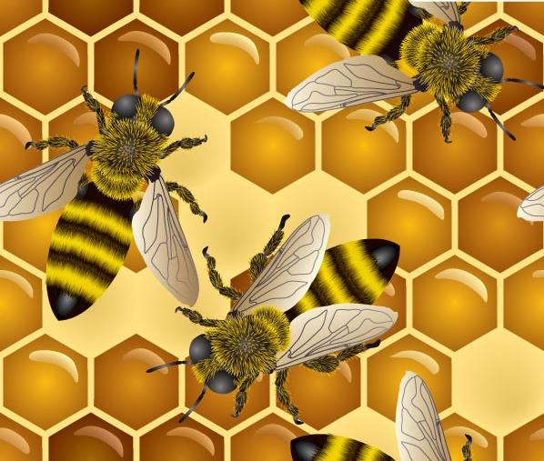 超清晰放大版蜜蜂素材矢量图免费素材下载