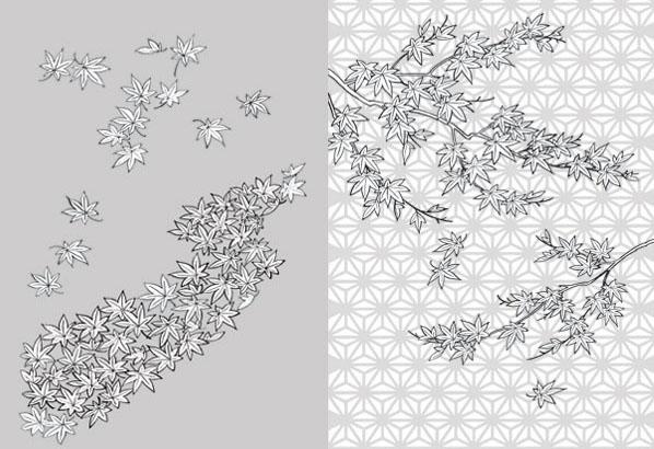 黑白植物速写 植物花卉工笔画