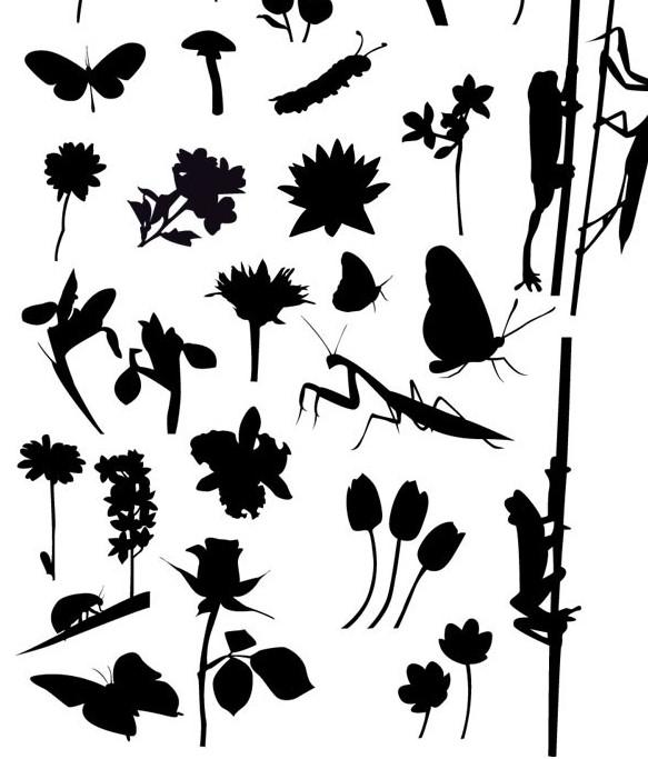 30点击:640 次 素材简介: 多款陆地海洋动物黑白剪影矢量
