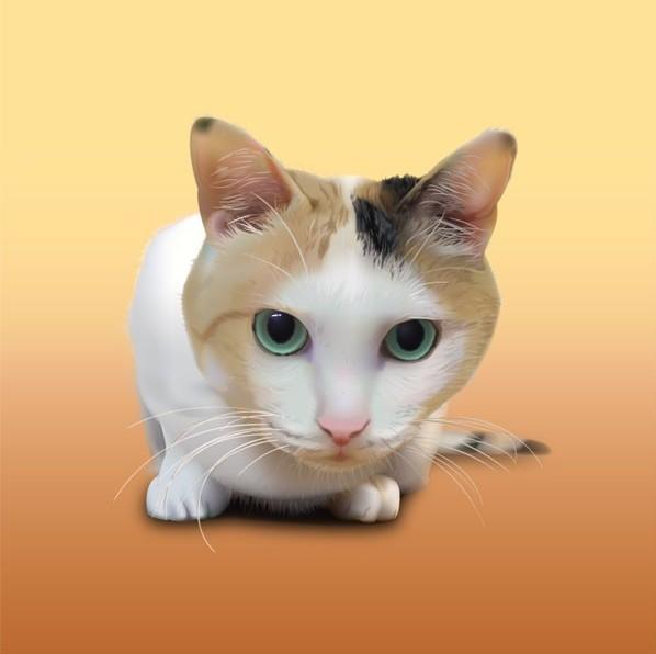 写实风格可爱小猫咪矢量图