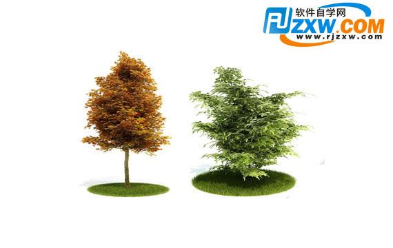 植物3dmax模型免费素材下载高清图片