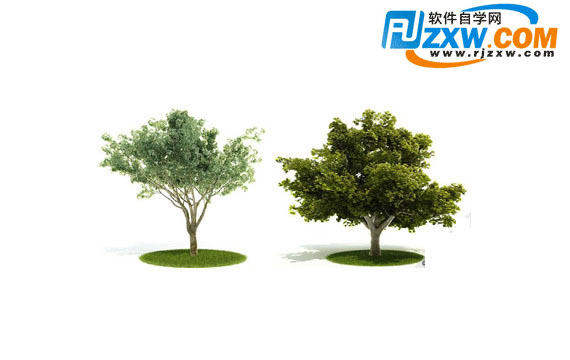 ps树木素材免费下载