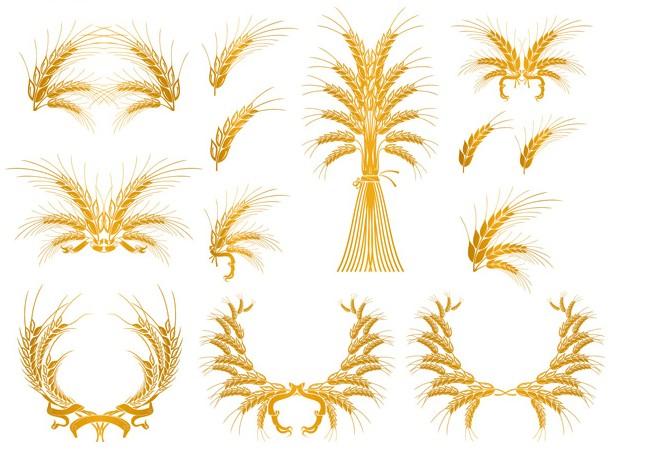 欧式风格金色花纹装饰免费素材下载