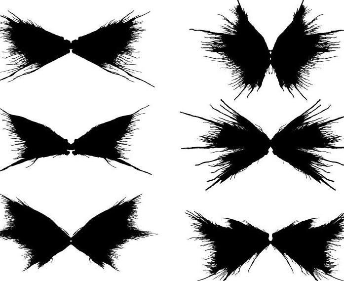 各种翅膀的黑色图案矢量素材