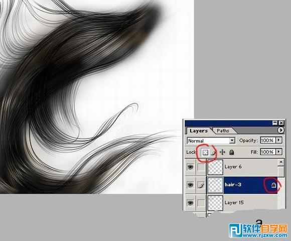 第10步、 如果你保留了拷贝头发丝时候的分层,你是明智的,因为接下来我们要利用分层大玩效果,此教程由软件自学网首发,牛吹大了,其实就只有一个操作。在公布这个操作之前,建议你先整理一下你的图层,你现在可能有多得像头皮屑一样的头发丝图层,把它们按片区分一下类,同一片区的可以合起来,这样看着清爽点,因为做到这会儿谁也没有太好的脾气了。做完这件事,你就操起你的毛笔刷Brush Tool,调整好Opacity值。注意,精华步骤要出现了:在layer面板上将所有头发丝层都按下透明象素锁定开关(图a),一定要记住,凡是