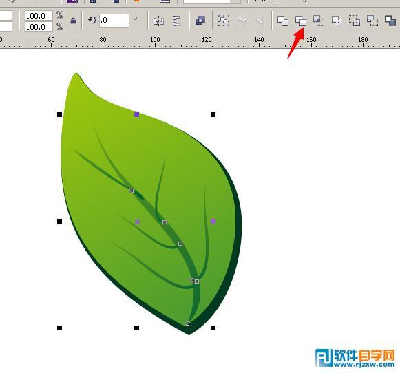 coreldrawx6设计罐头主题的logo制作设计图树叶黄桃图片