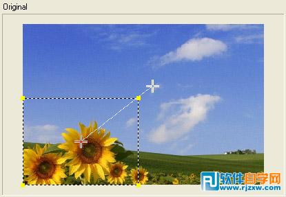 在会声会影教你怎么让照片自动摇动和缩放_软件自学网