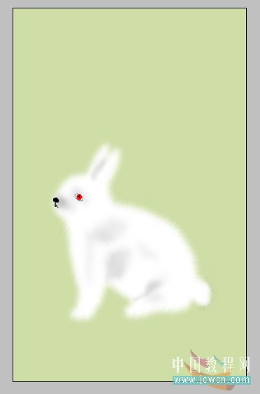 绘制野外小白兔