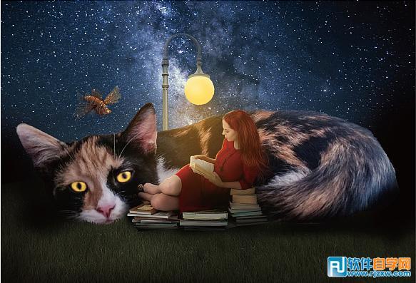 PS合成大猫和阅读的星空女孩_软件自学网