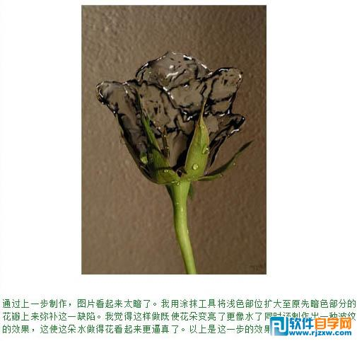 photoshop画玫瑰