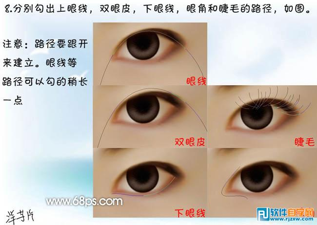 8,分别勾出上眼线,双眼皮,下眼线,眼角和睫毛的路径,如下图.