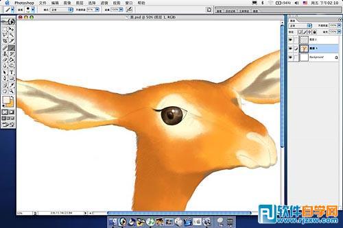 用ps鼠绘超可爱卡通鹿动物