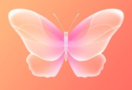 ps动态蝴蝶特效素材