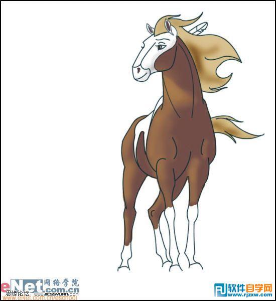 马怎么画步骤图片