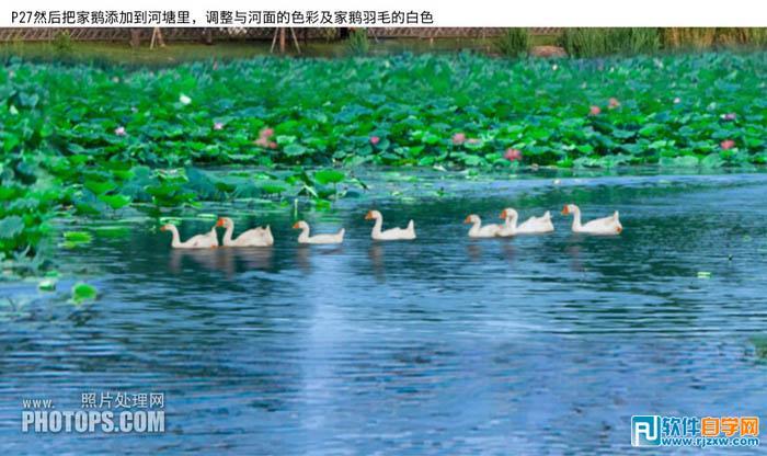 最终效果:-PS给水景图片增加漂亮的荷叶及蓝天